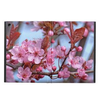 Flor de cerezo Asia