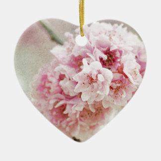 Flor de cerezo botánica ornato