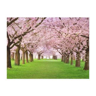 Flor de cerezo capítulo de la impresión del arte d lona estirada galerías
