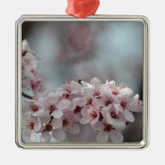 Flor de cerezo floral adorno cuadrado plateado