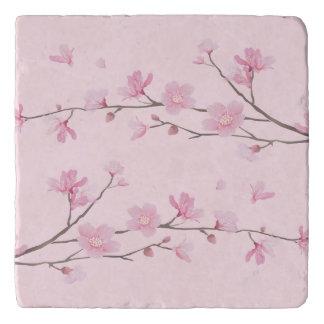 Flor de cerezo - fondo transparente salvamanteles