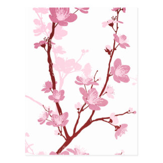 Flor de cerezo japonesa, flor rosada apacible, postal