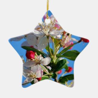 Flor de cerezo radiante ornamentos de reyes