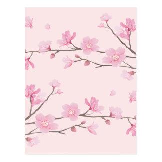 Flor de cerezo - rosa postal