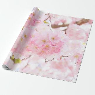 Flor de cerezo rosada de Sakura del árbol Papel De Regalo