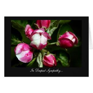 Flor de cerezo rosada - en la condolencia más prof felicitación