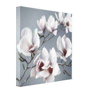 Flor de la magnolia de la primavera, rosa, suaveme lienzo