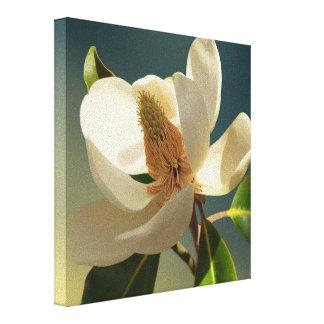Flor de la magnolia meridional, romántica lienzo