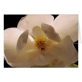 Flor de la magnolia tarjeta