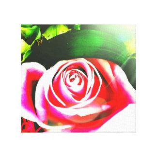 Flor de la mañana lienzo