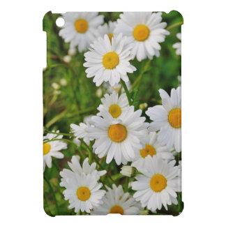 Flor de la margarita blanca