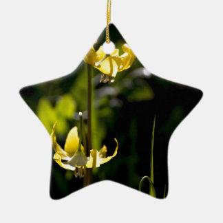 Flor de la montaña adorno navideño de cerámica en forma de estrella