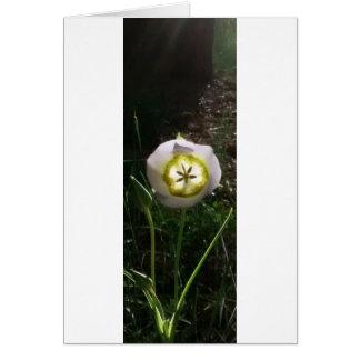 flor de la montaña tarjeta de felicitación