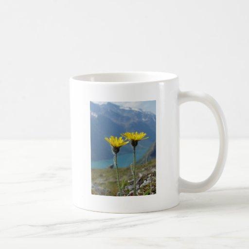 Flor de la montaña taza
