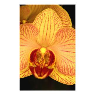 Flor de la orquídea tarjetas publicitarias