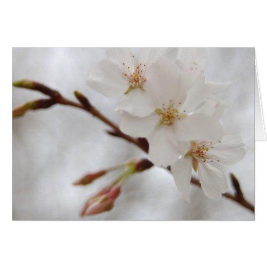 Flor de la primavera tarjeta pequeña