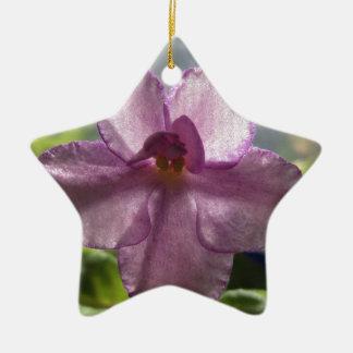 Flor de la violeta africana de la lavanda adorno de reyes