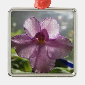 Flor de la violeta africana de la lavanda ornamentos de reyes magos
