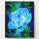 Flor de loto azul y su significado placas con fotos