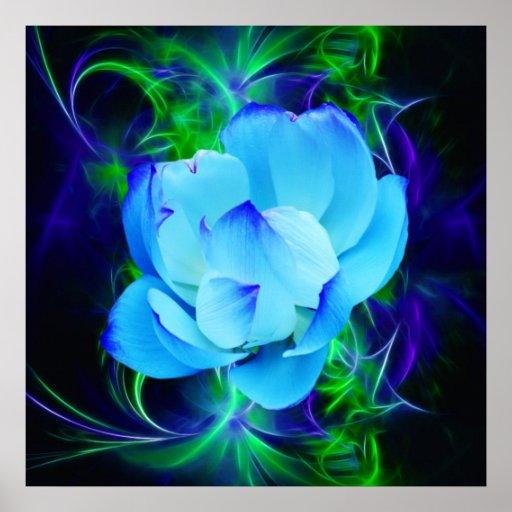 Flor de loto azul y su significado póster