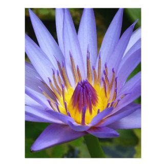 Flor de Lotus Tarjeta Publicitaria
