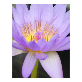 Flor de Lotus Flyer A Todo Color