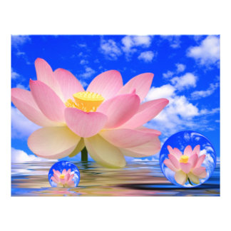 Flor de Lotus llevada en agua Folleto 21,6 X 28 Cm
