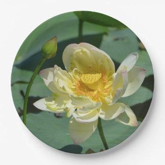 Flor de Lotus Plato De Papel