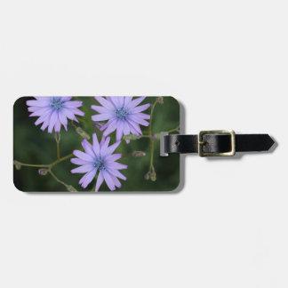 Flor de una lechuga de la montaña etiquetas maleta