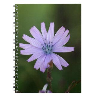 Flor de una lechuga de la montaña libreta