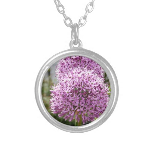 Flor del allium de Violett Colgantes