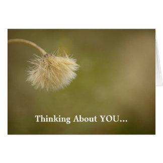 Flor del campo que piensa en usted la tarjeta de