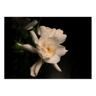 Flor del Gardenia Tarjetas De Visita Grandes