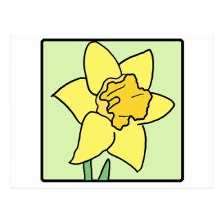 Flor del jardín de la primavera del narciso del postal