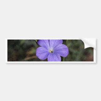 Flor del lino perenne o azul pegatina para coche