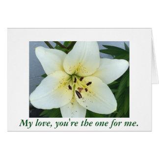 Flor del lirio de día usted me casará las tarjetas