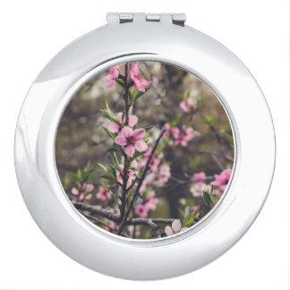 Flor del melocotón espejo compacto