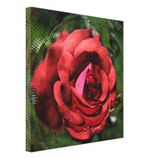 Flor del rosa rojo en extracto de la floración