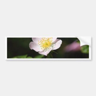 Flor del suave-rosa duro pegatina para coche