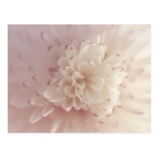 Flor en colores pastel suave tarjeta postal
