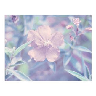 Flor en colores pastel postal