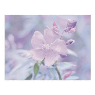 Flor en colores pastel tarjeta postal