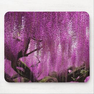Flor floral de la vid del rosa púrpura de las alfombrilla de ratón