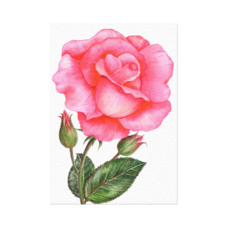 Flor floral subió rosa botánico del arte del arte