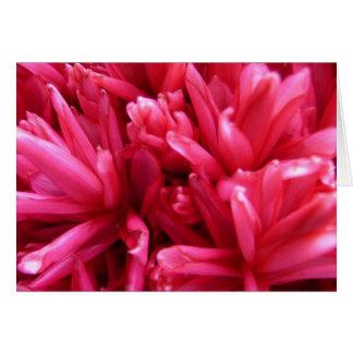 Flor hawaiana tarjeta pequeña