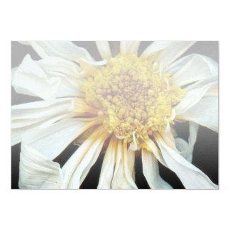 Flor - margarita - sol borracho invitación 12,7 x 17,8 cm