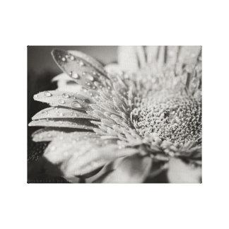 Flor negra y blanca y impresión de la lona de las