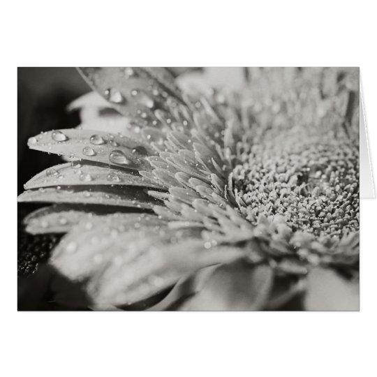 Flor negra y blanca y tarjeta de nota de las
