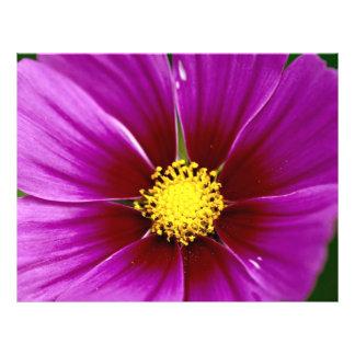 Flor, primer folleto 21,6 x 28 cm