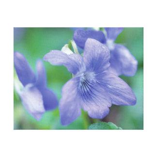 Flor púrpura de la foto hermosa del primer en lienzo